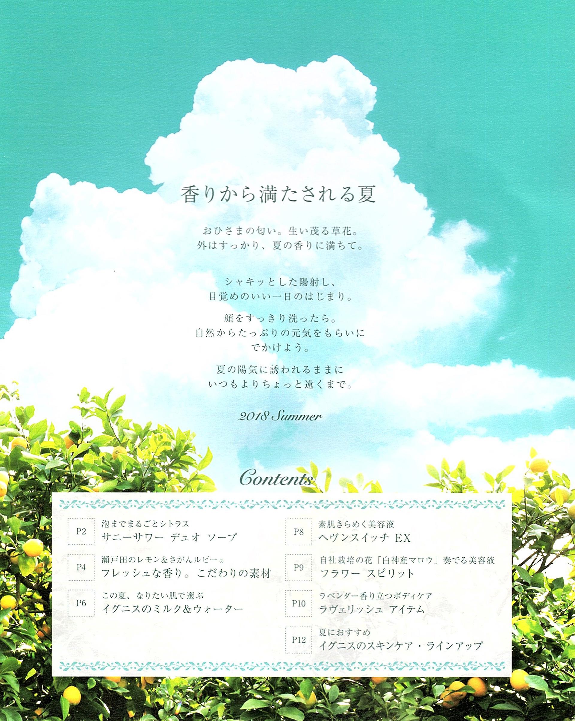 IGNIS 2018 Summer Letter_03