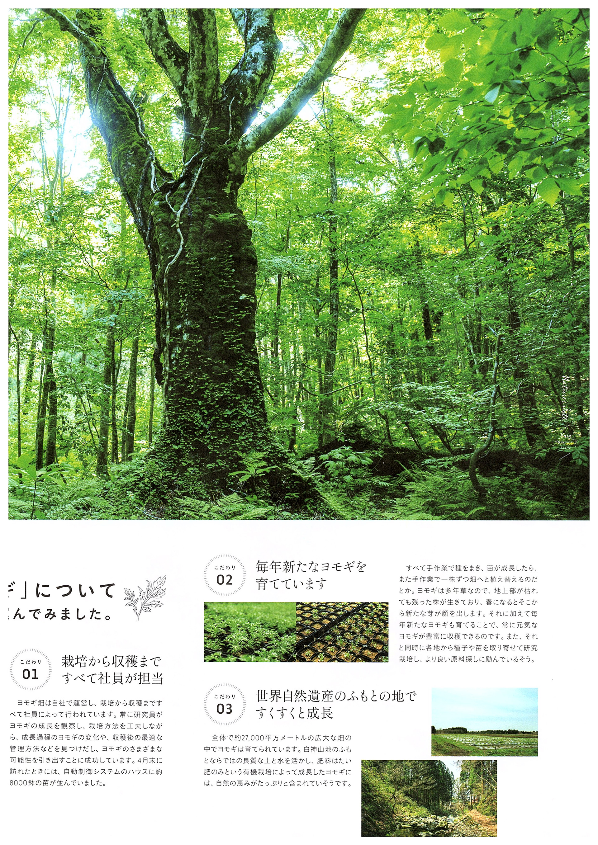 Nature note 2018 Summer 2 issue_03